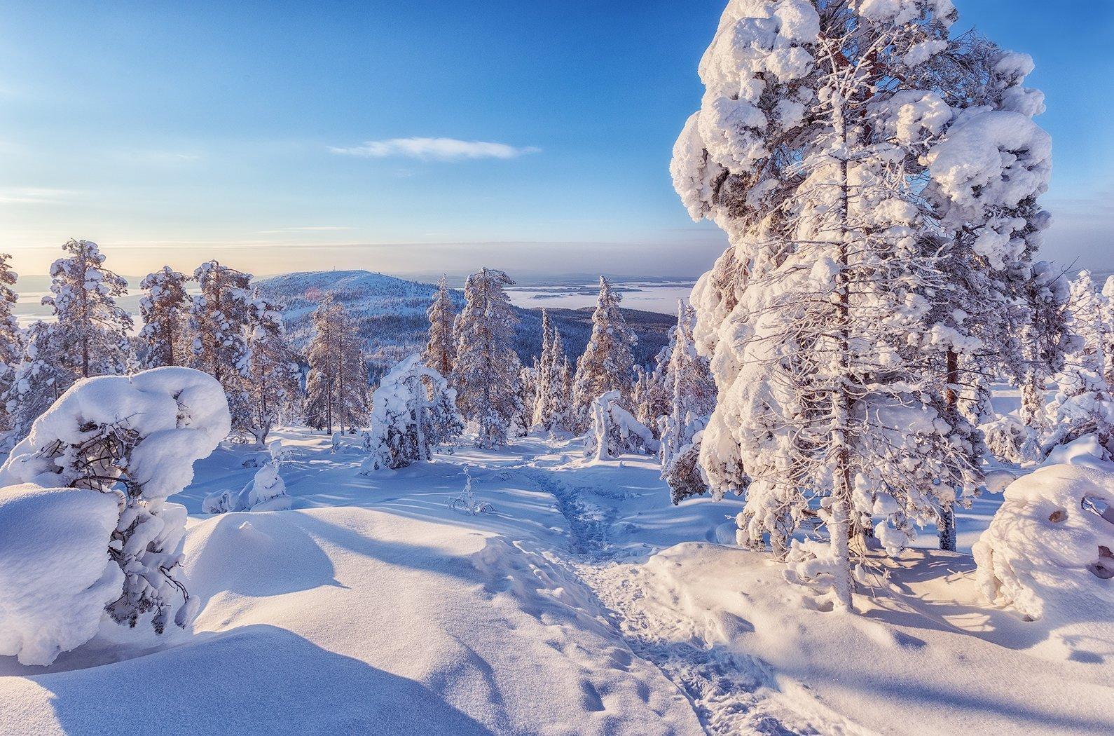 заполярье, гора, снег, ели, волосная, тропинка, Липецких Владимир