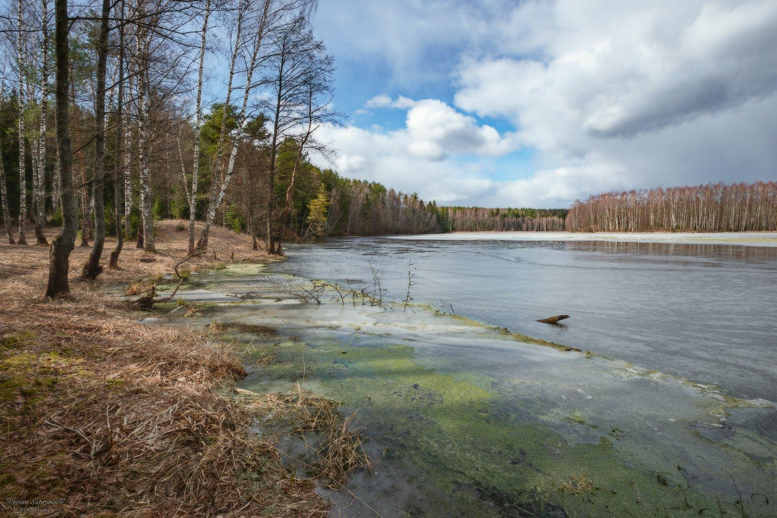ивановская область, март, весна, разливы, весенние заморозки, заморозки, озеро, лесное озеро, Николай Сапронов