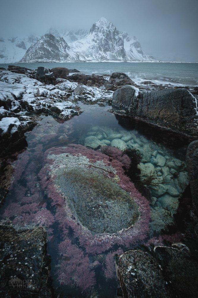 lofoten,norway,norwegian,winter,sea,seascape,mountains,wintertime,, Szatewicz Adrian
