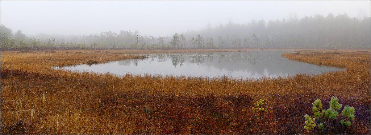 озеро, туман, Alexander Gil