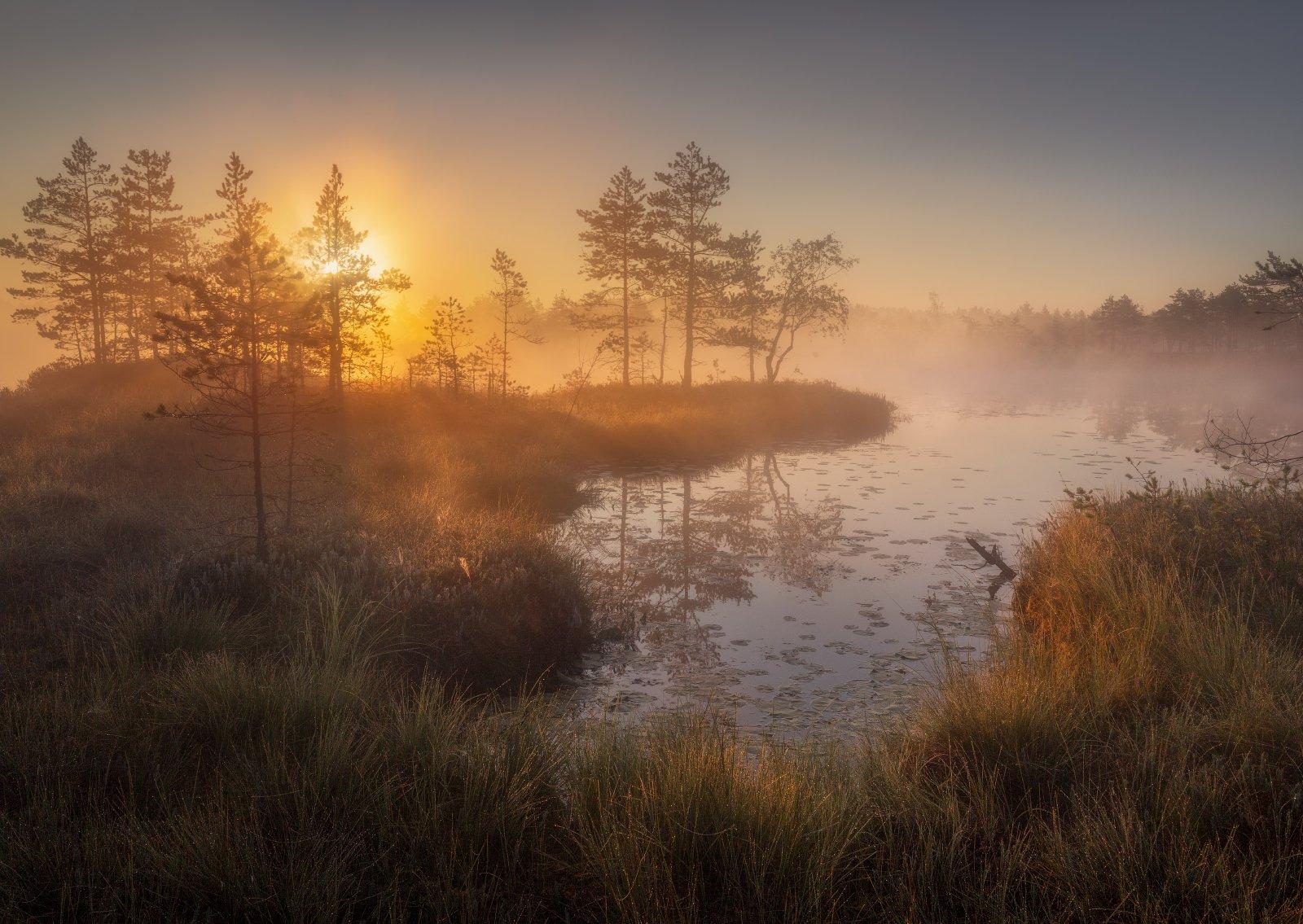 болото, озеро затейливое, Рудченко Ольга