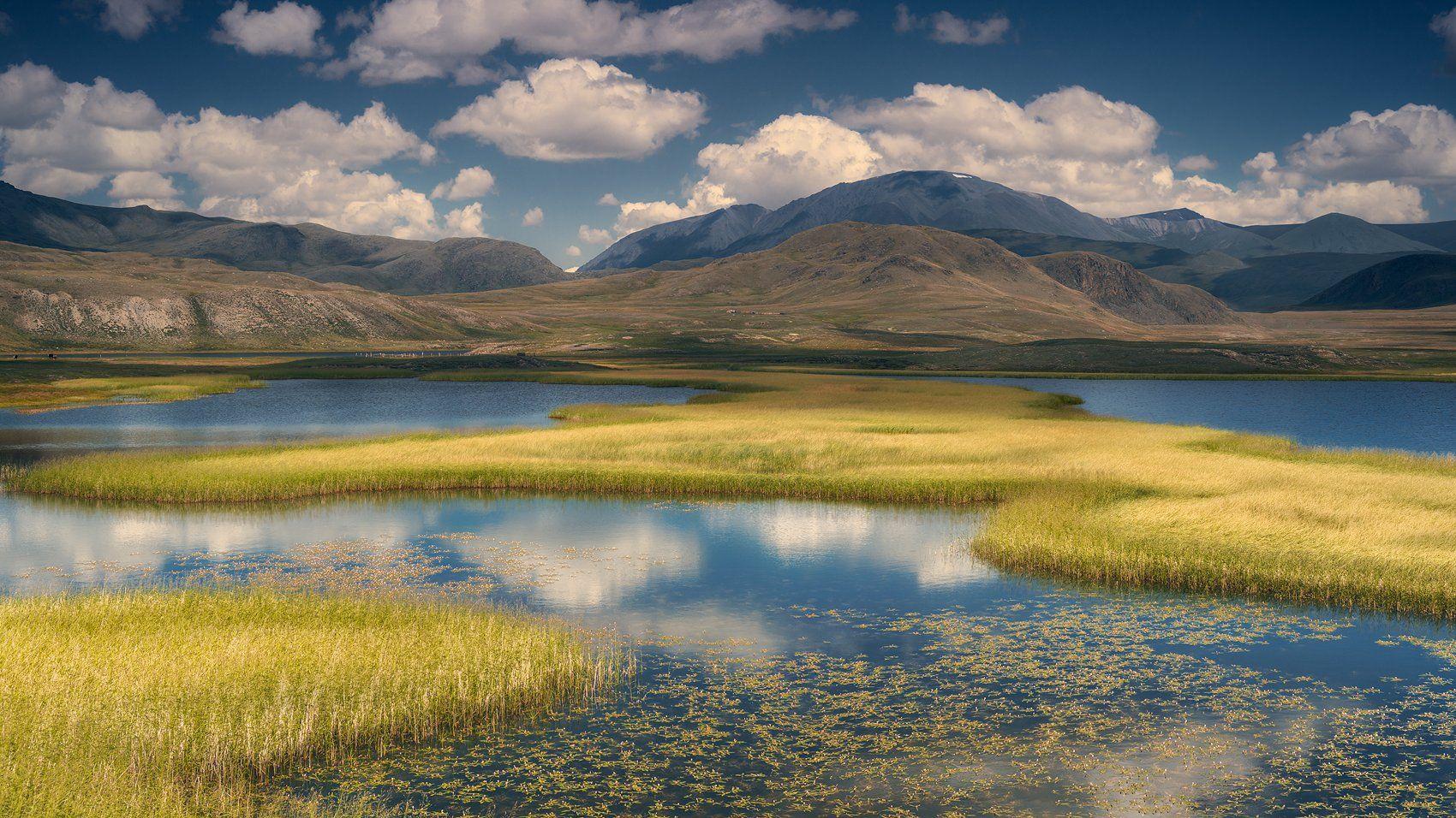 пейзаж, панорама, горы, озеро, алтай, сибирь, природа, путешествия, буйлюкем, ряска, трава, небо, облака, отражения, панорама, путешествия, большой, красивая, Антипов Дмитрий