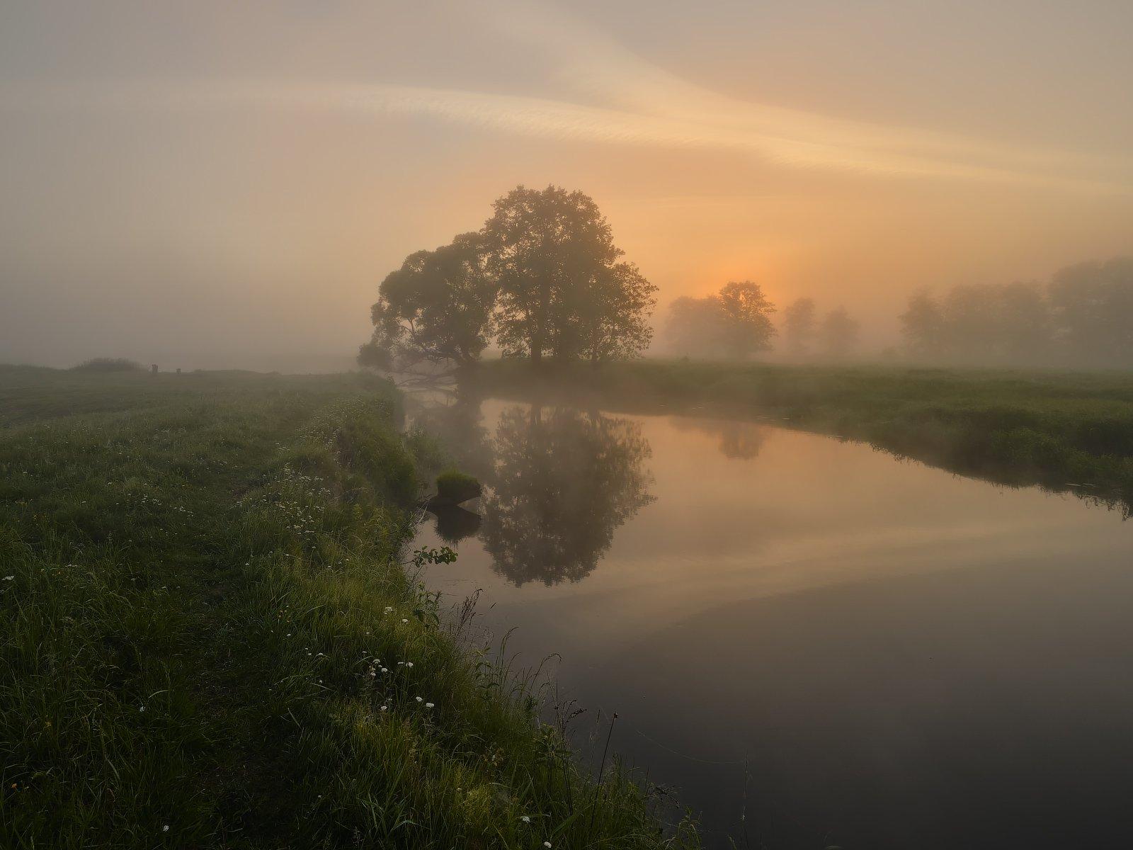 туман, рассвет, река, солнце, утро, Бельцев Григорий