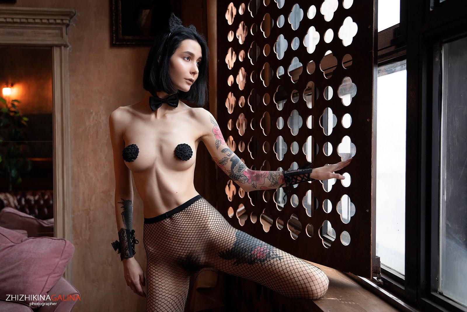 девушка, ню, артню, красивая, окно, фотограф, nu, nude, kitty, girl, portrait, кошка, Галина Жижикина