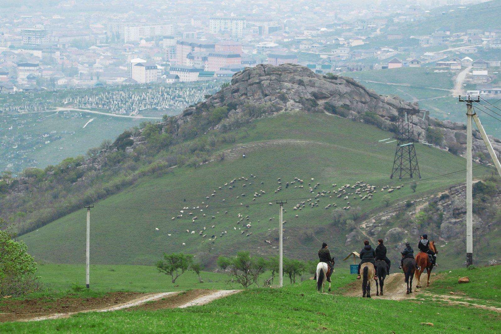 махачкала,горы,пригород,окраина,город,пейзаж,люди.лошади,овцы,, Magov Marat