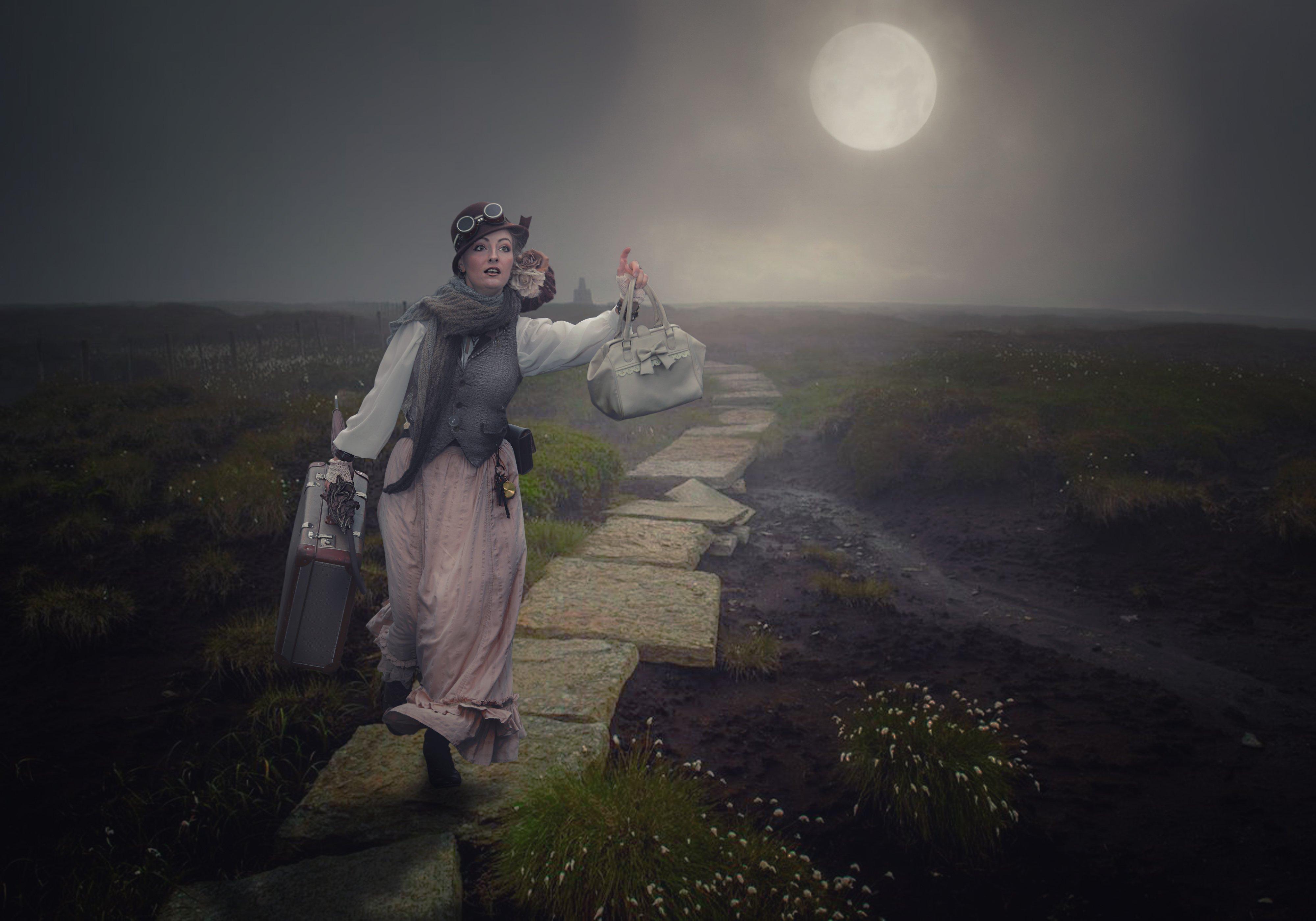 девушка, поле, чемодан, луна, Sergii Vidov