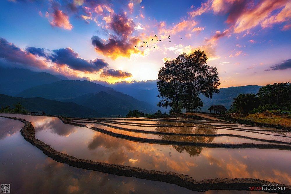 quanphoto, landscape, sunset, sundown, twilight, reflections, mountains, purple, valley, terraces, fields, highland, vietnam, quanphoto