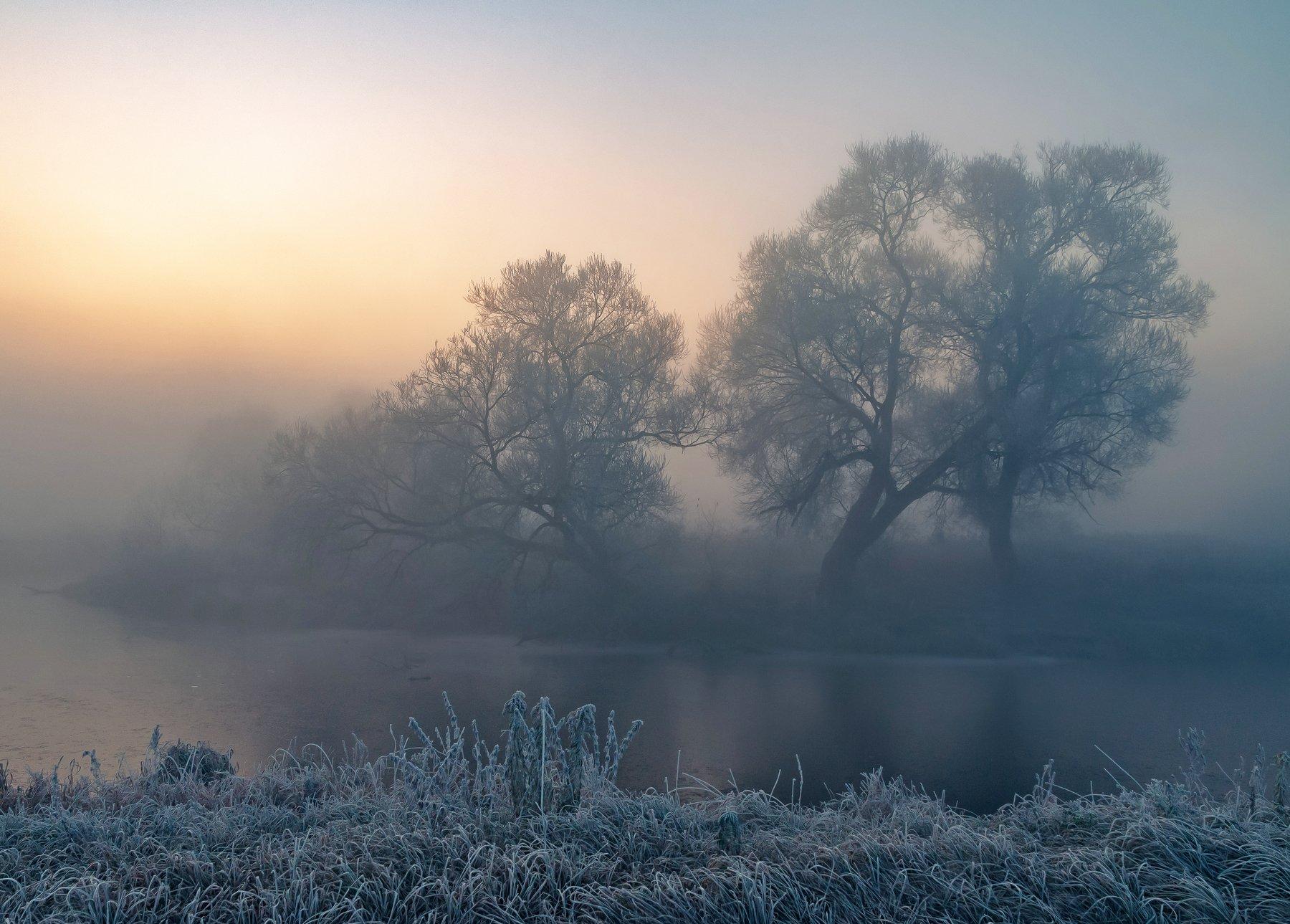 утро, свислочь, туман, иней, пейзаж, Александр Гвоздь
