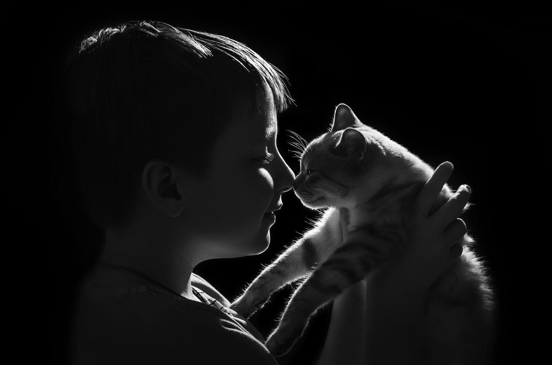 котёнок,ребёнок,дружба,дети,чёрно-белый,контур, Володин Владимир