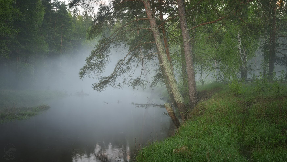 река, весна, туман, Гордиенко Анатолий