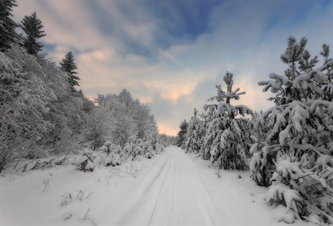 снег, сугробы, елки, лес, иней, тучи, краски, тропинка, зима, мороз, Георгий Машковцев