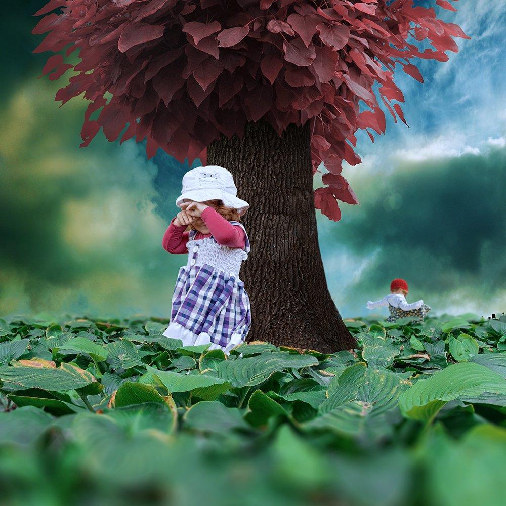 old, tree, leaf, ioana, smoke, stone, walking, manipulation, daughter, photoshop, fantasy, blured, psd, tutorials, red, green, Caras Ionut