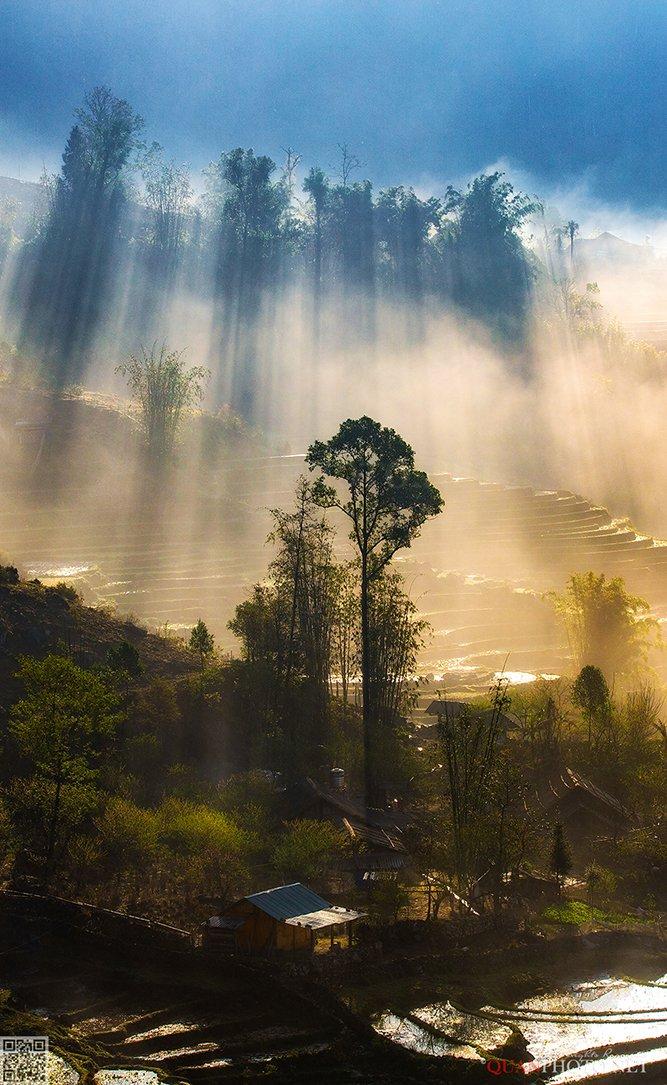 quanphoto, landscapes, morning, sunlight, sunshine, rays, trees, village, nature, vietnam, quanphoto