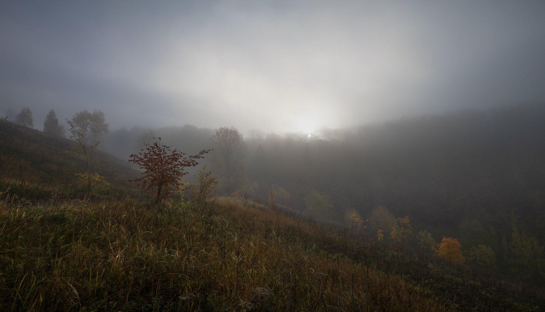октябрь утро, Колесов Андрей