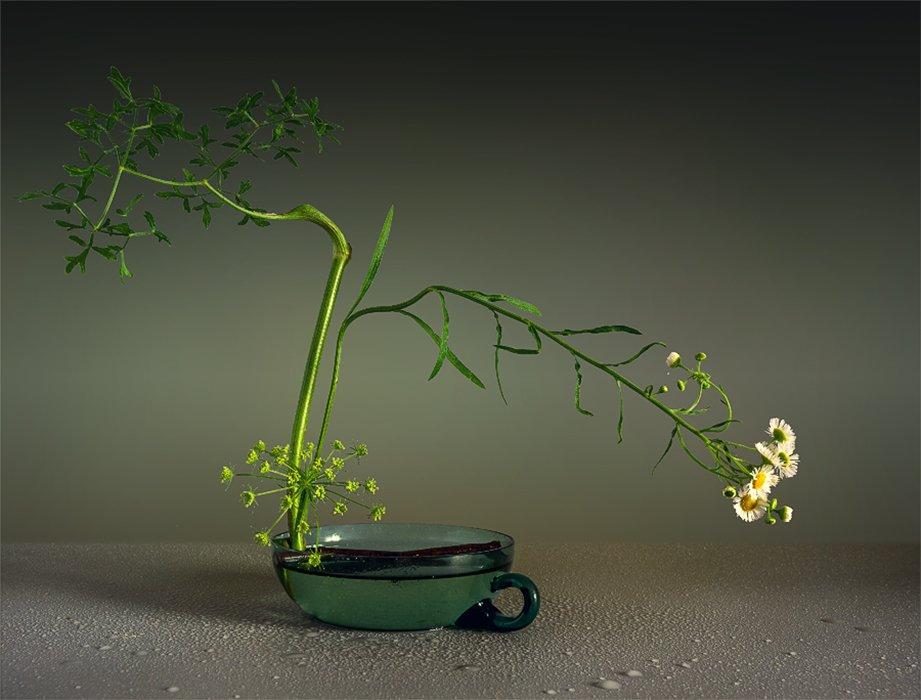 still life, натюрморт,    винтаж,    цветы,  минимализм, икебана, Шерман Михаил