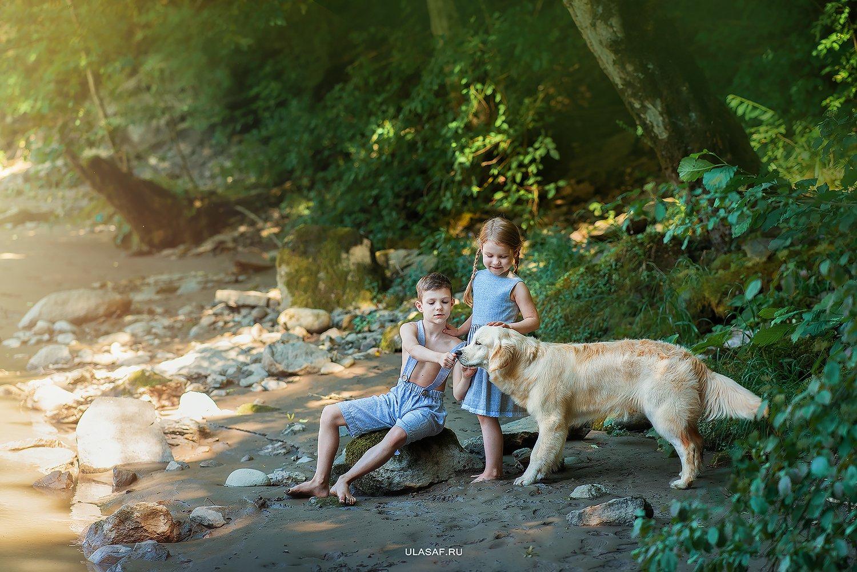 art photo, лето, summer, портрет, река, горы, ребенок, дети, животное, собака, golden retriver, dog, river, радость, people, малыш, друзья, happy, любовь, love, 105mm, kid, children, beautiful, puppy, щенок, magik, волшебство, Юлия Сафо