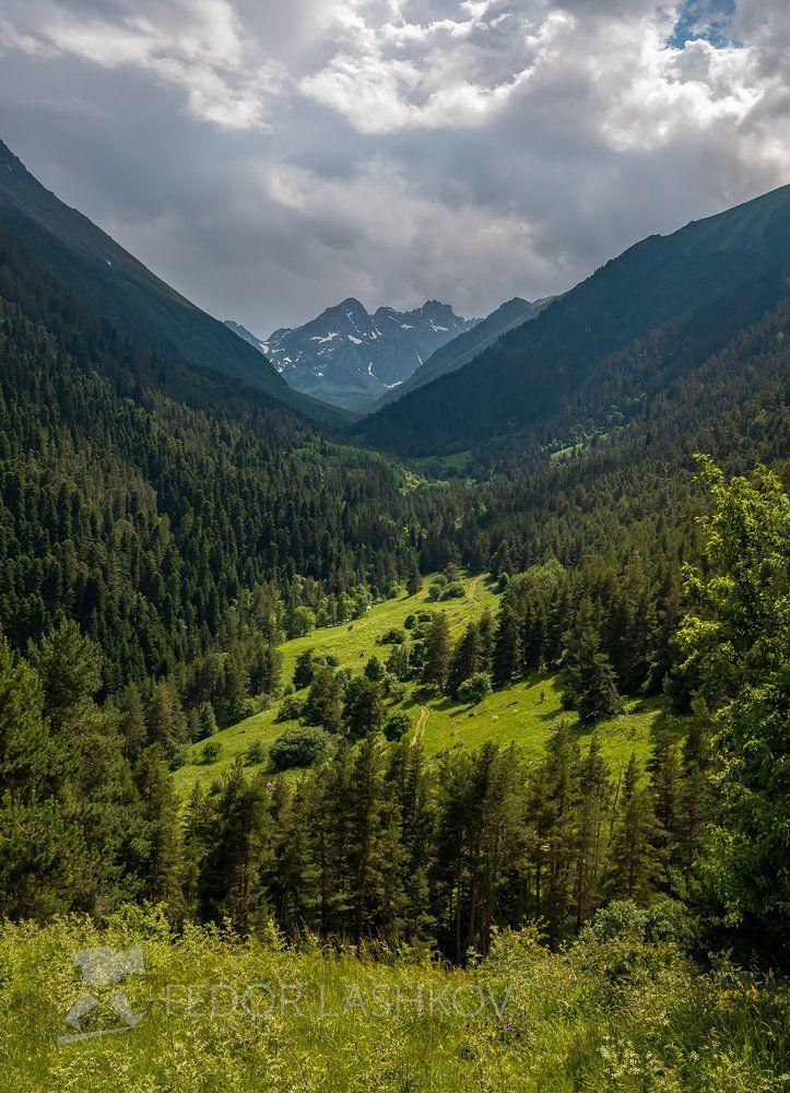 горы, гора, домбай, долина, азгек, альпийские, лето, в горах, облака, теберда, поляна,, Лашков Фёдор