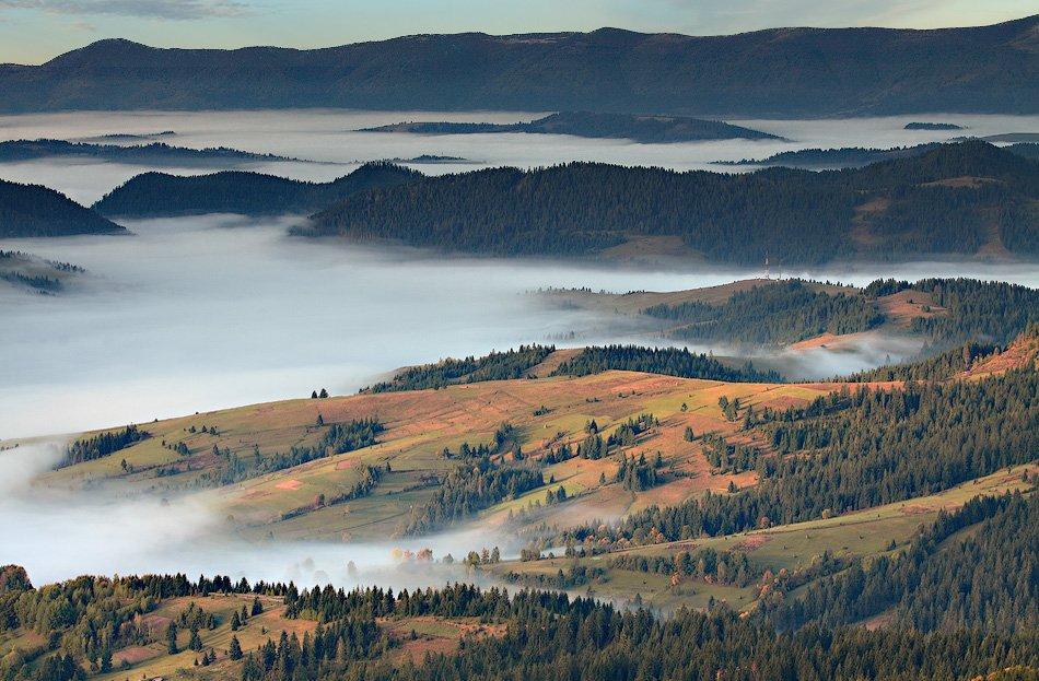 карпаты, горы, утро, туман, Михаил Глаголев