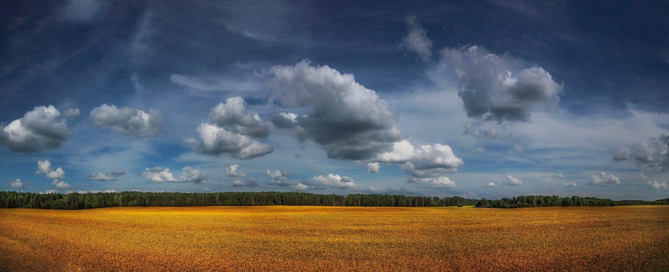 лето, небо, поле,, Сергей Шабуневич