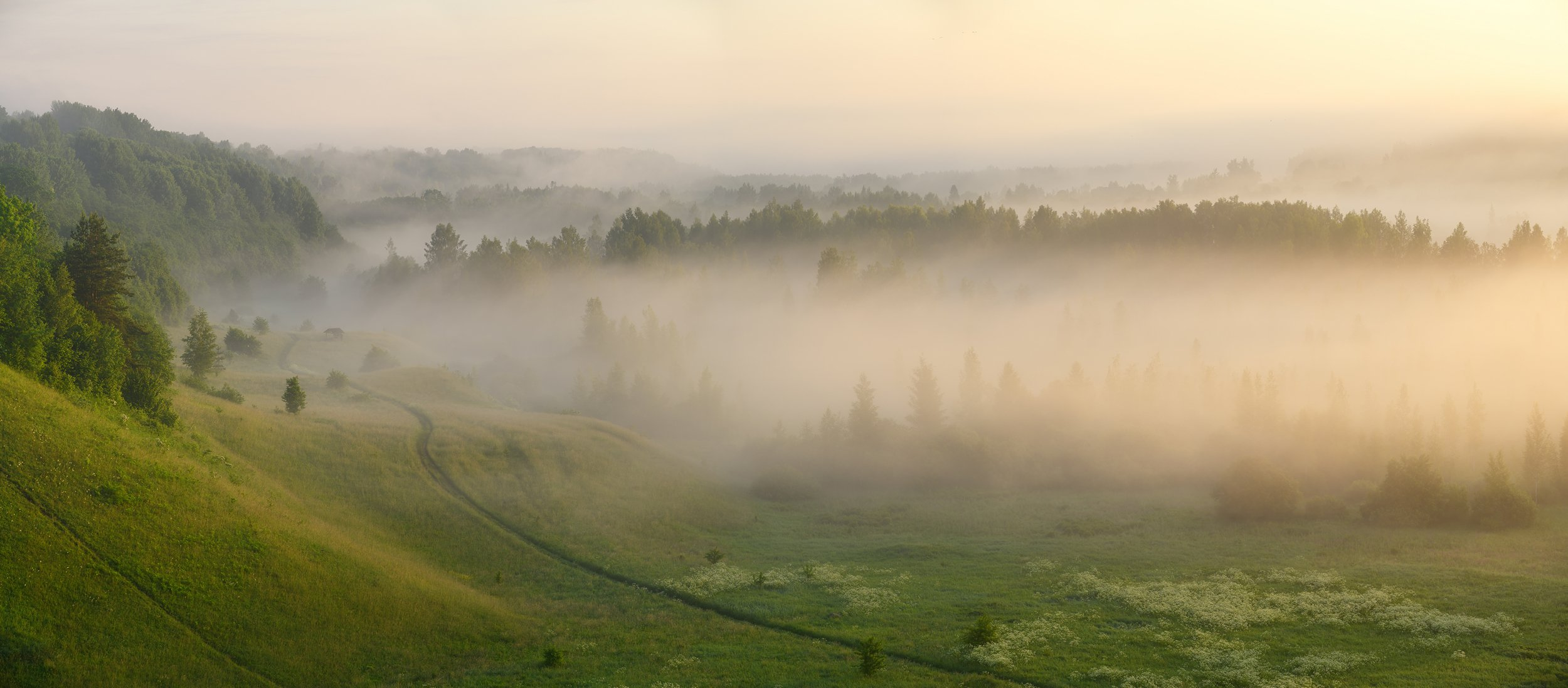 пейзаж, псков, Dmitriev Roman