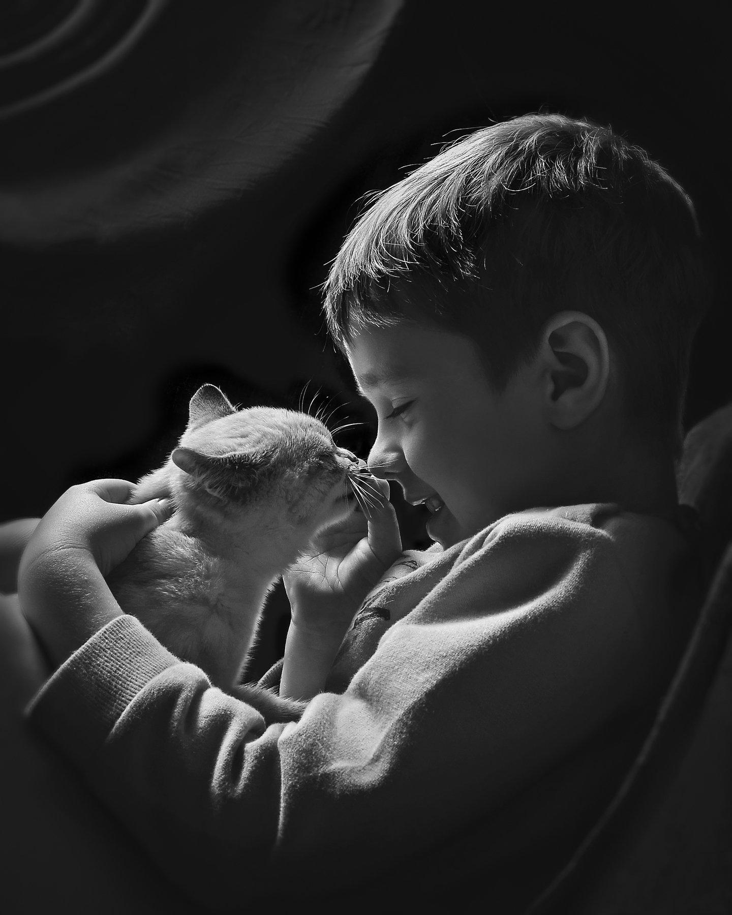 игры,дети,животные,кошка,чёрно-белый, Володин Владимир