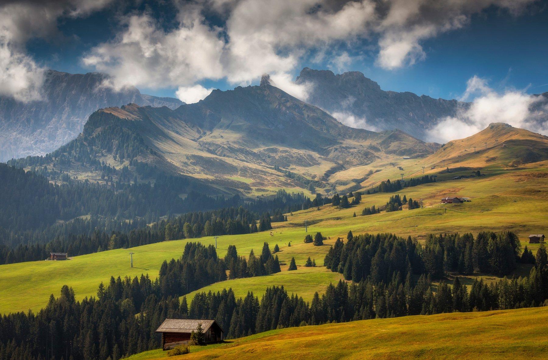 горы, поля, лес, Alexandr Bezmolitvenny