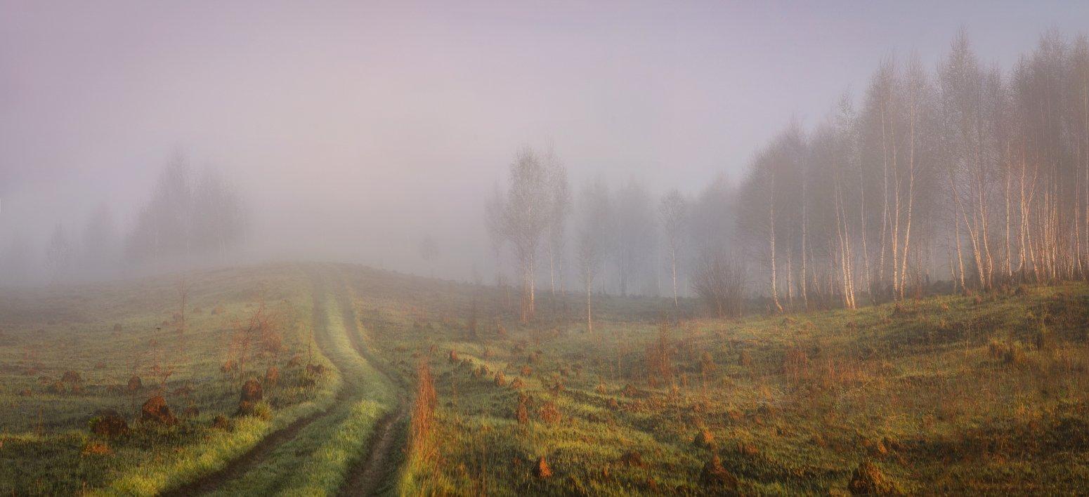 тула, майский пейзаж, Сергей Кочергин