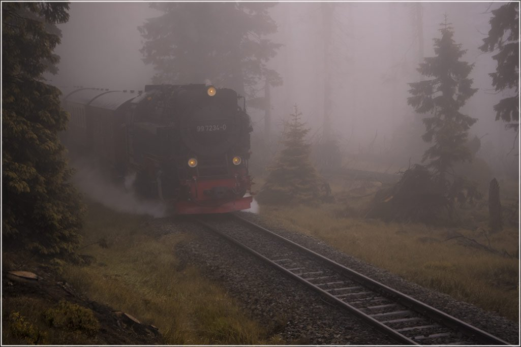 foto liubos, путешествие, локомотив. предгорья гарца, брокен, Любовь Селиванова