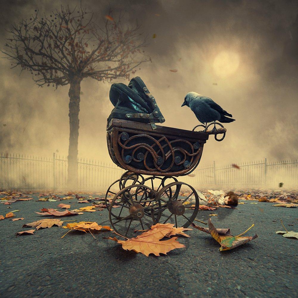 sky, reflection, bird, light, clouds, ground, manipulation, elephant, mounting, wheel, bag, feather, psd, spinner, tutorials, Caras Ionut