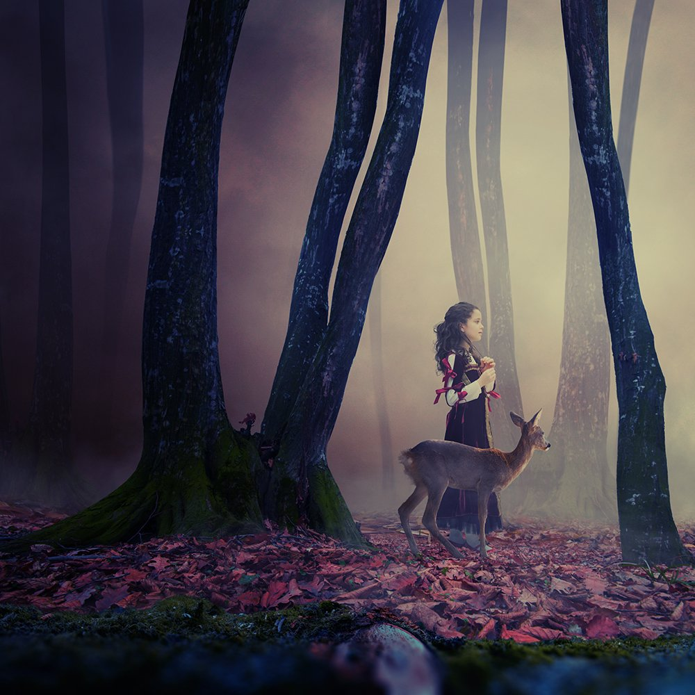 mist, red, forest, girl, light, tree, dog, running, purple, mystery, manipulation, cliff, photoshop, violet, deer, iris, fantasy, balance, joy, psd, ioana, , tutorials, Caras Ionut