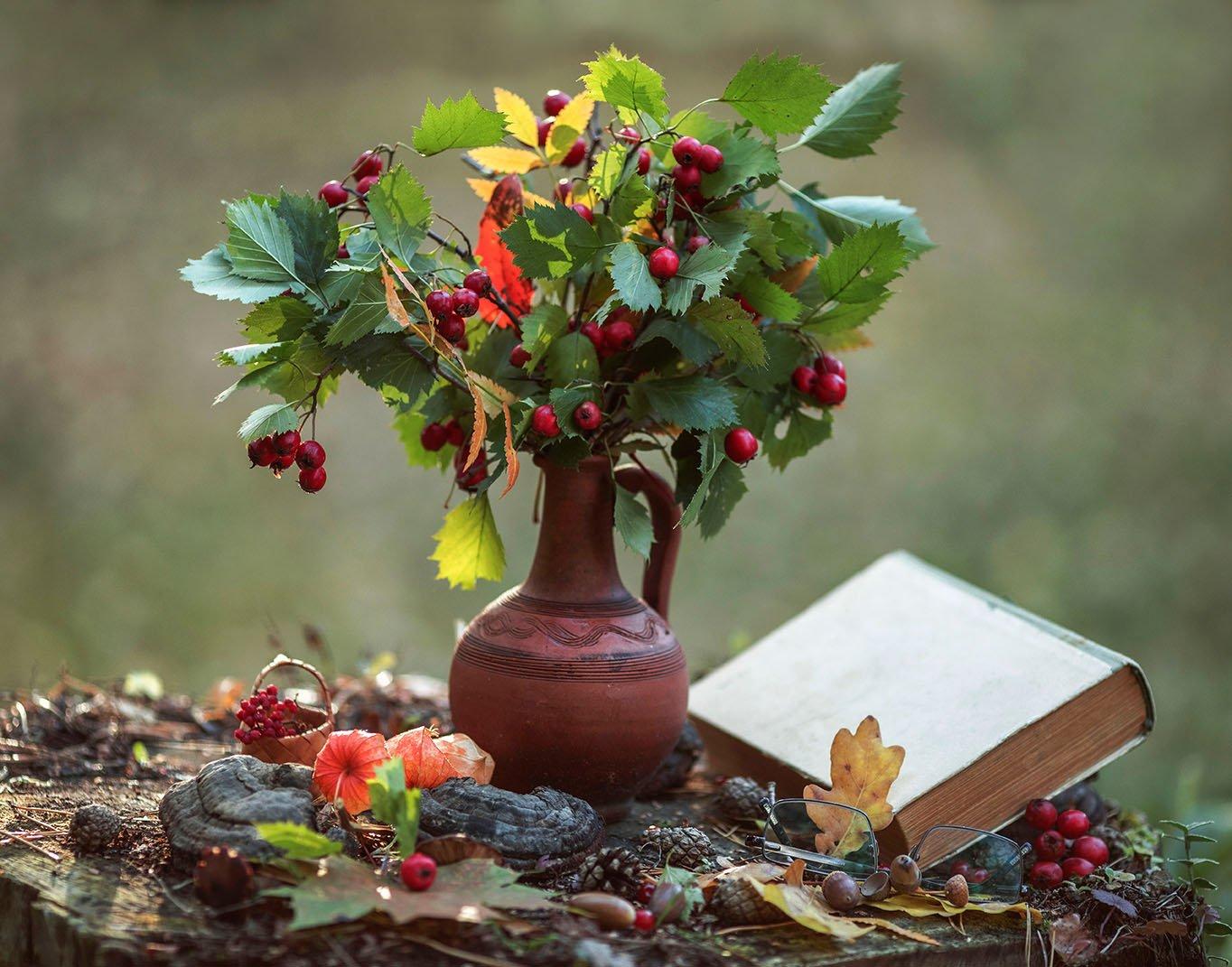 натюрморт, осень, этюд, природа,ягоды, краски,красота, stilllife, autumn, nature, beautiful, berry, Стукалова Юлия
