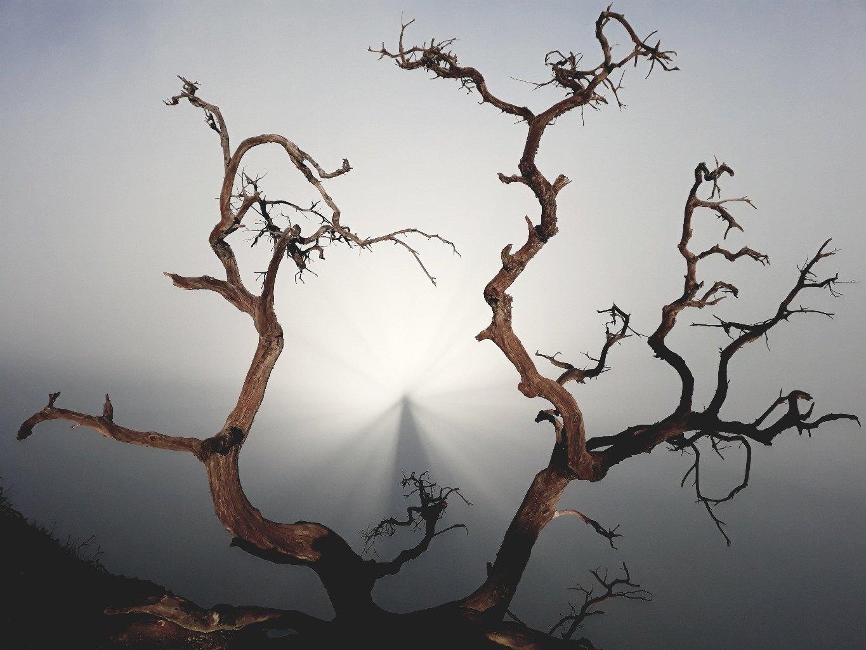 брокенский, призрак, вулкан, иджен, туман, Karasev Pavel