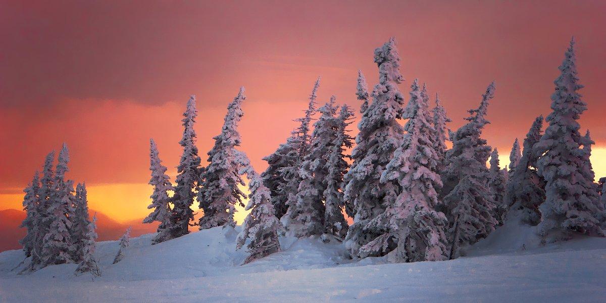 шерегеш, гора зеленая, вечер, пихты, свет, тени, краски, горная шория, Валерий Пешков