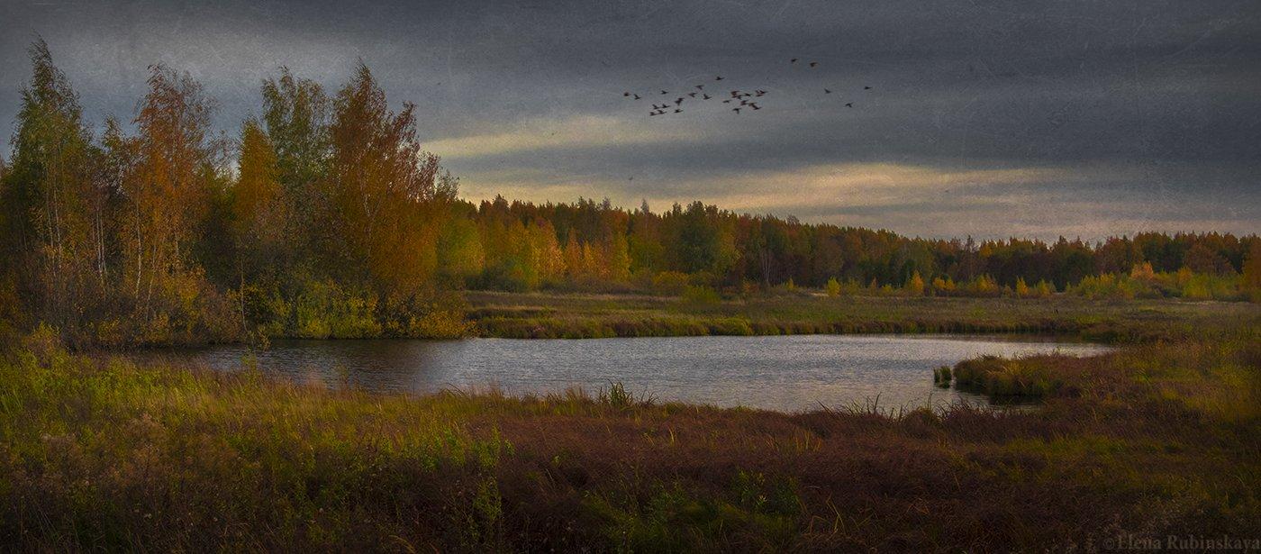 пейзаж,осень, Елена Рубинская
