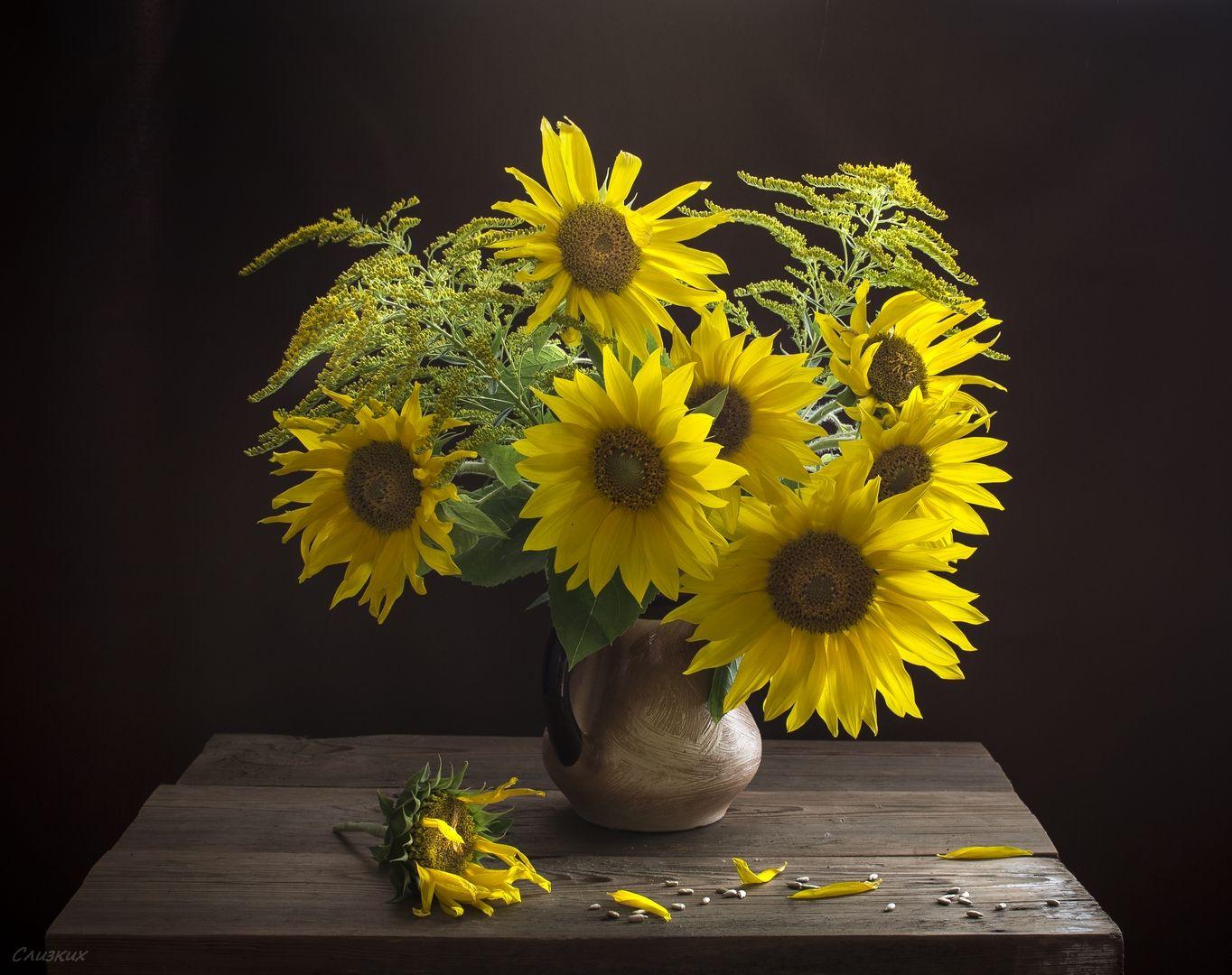 нас найнижчі фото картинки цветы подсолнухи в вазах способность мужчины быть