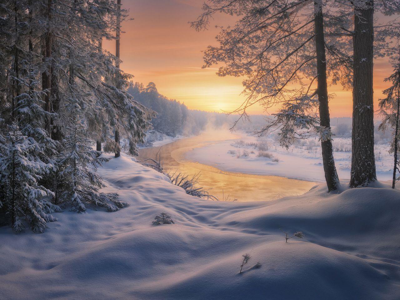 На солнечной излучине реки. Медянцев Дмитрий