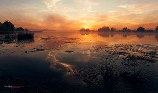 Туманный рассвет на берегу реки Дубна.
