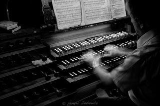 pipe organ 2/5