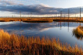 Бездонные озёра на болоте. (Штатив с мой рост полностью ушел под воду опущенный вплотную к берегу)