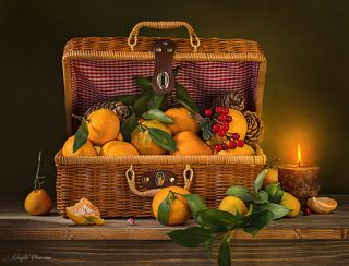 Мандарины в чемоданчике
