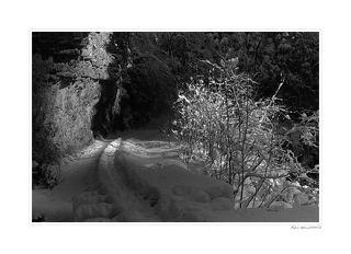 Зимой Гуамское ущелье просто завораживает,лучи света как спотом вырезают из темноты дорогу,кусты присыпанные снегом,стены ущелья.Зима 2005 год,мороз 20 градусов,утро.