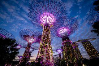 Тропический парк Gardens by the Bay