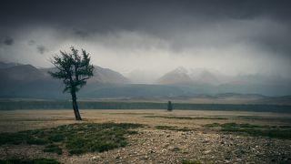 Вид на  Северо-Чуйский хребет и ущелье Актру