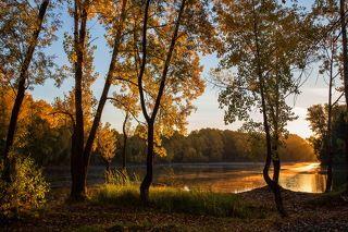Осеннее Солнце...