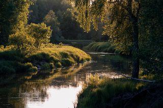 02 ... и зрелую зелень позднего лета, ...