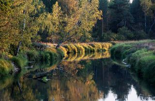 02 ... в красочную осень, ...
