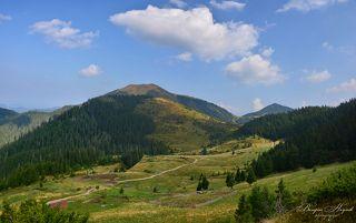 Полонына Лисичья, вид на северо-запад, вершины Барлибашка и Петрос Мармаросский