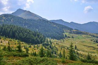 Полонына Лисичья, вид на юго-восток, справа вершина Поп Иван Мармаросский, за хребтом Румыния