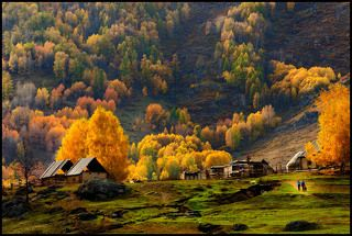 A small village in Xinjiang