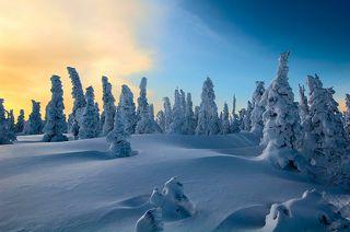 03 2009 год остался на фото обилием снега и цветовыми переходами